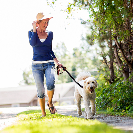 Woman walking a dog photo