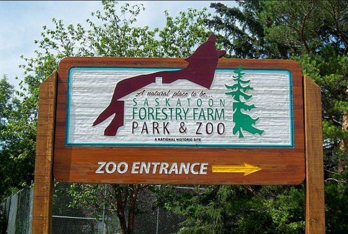 Forestry Farm 2