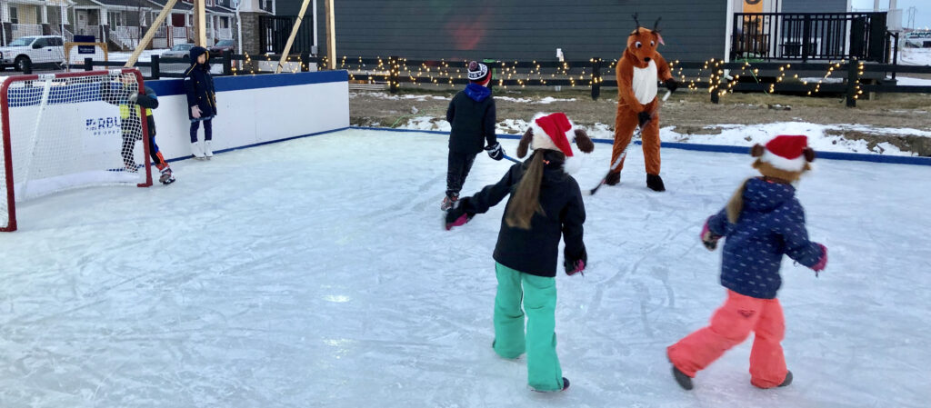 Meadows Ice Rink